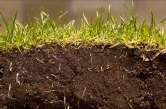 Состав почвы 3 класс окружающий мир