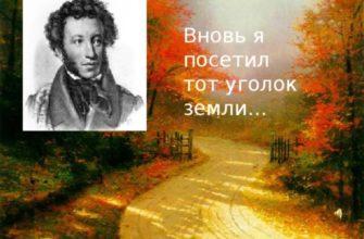 Стихотворение Пушкина «Вновь я посетил»