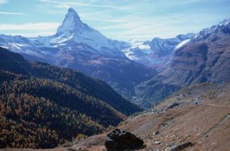 Что такое широтная зональность и высотная поясность