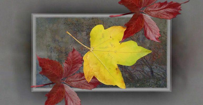 Тютчева 6 класс анализ стиха листья