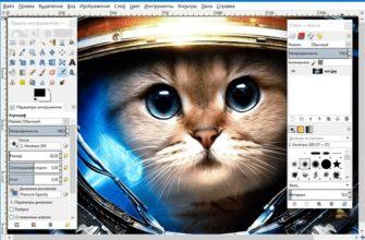 Векторный графический редактор (информатика 7 класс)