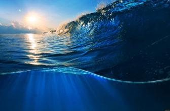 Воды мирового океана