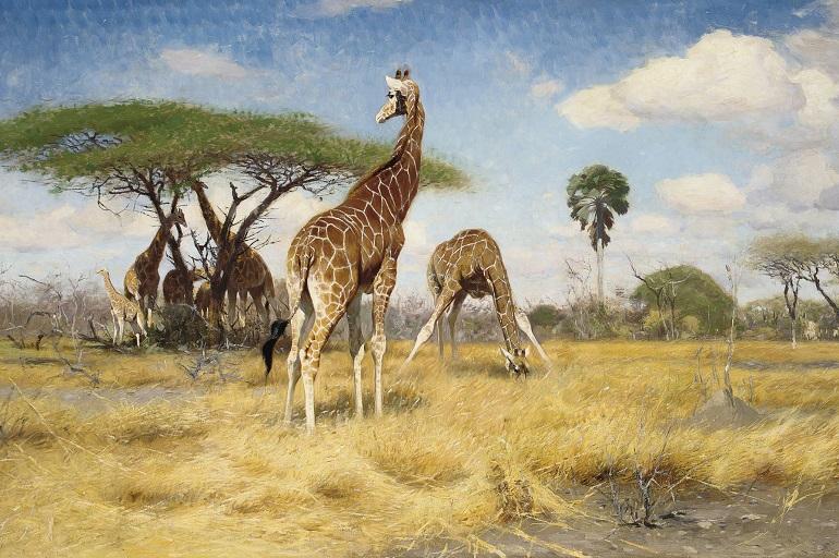 Стихи про Африку