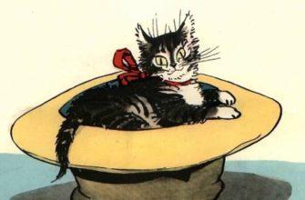 Живая шляпа читательский дневник носов