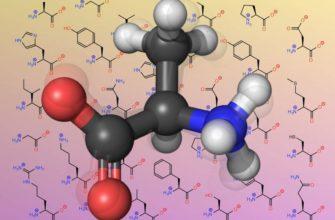 Аминокислоты проявляют свойства