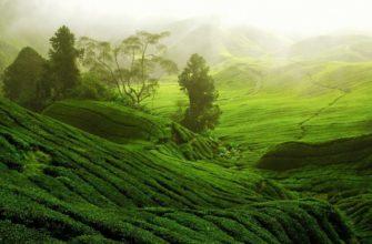 Китая природные районы китая