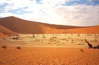 Климатический пояс пустыни