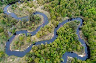 Что такое русло реки